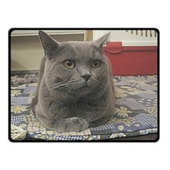British Shorthair Grey Double Sided Fleece Blanket (Small)