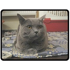 British Shorthair Grey Double Sided Fleece Blanket (Large)