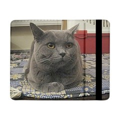 British Shorthair Grey Samsung Galaxy Tab Pro 8.4  Flip Case