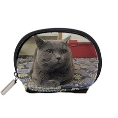 British Shorthair Grey Accessory Pouches (Small)