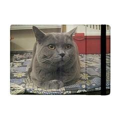 British Shorthair Grey iPad Mini 2 Flip Cases