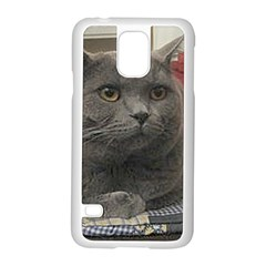 British Shorthair Grey Samsung Galaxy S5 Case (White)
