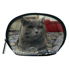 British Shorthair Grey Accessory Pouches (Medium)