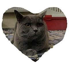 British Shorthair Grey Large 19  Premium Flano Heart Shape Cushions