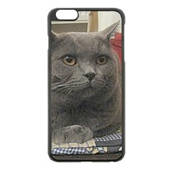 British Shorthair Grey Apple iPhone 6 Plus/6S Plus Black Enamel Case