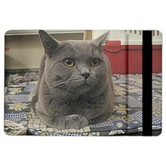 British Shorthair Grey iPad Air 2 Flip