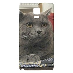 British Shorthair Grey Galaxy Note 4 Back Case