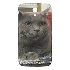British Shorthair Grey Samsung Galaxy Mega I9200 Hardshell Back Case