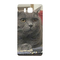 British Shorthair Grey Samsung Galaxy Alpha Hardshell Back Case