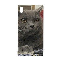 British Shorthair Grey Sony Xperia Z3+