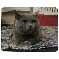 British Shorthair Grey Jigsaw Puzzle Photo Stand (Rectangular)