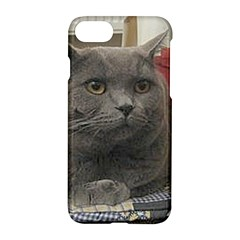 British Shorthair Grey Apple iPhone 7 Hardshell Case