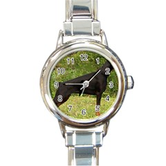 Doberman Pinscher Black Full Round Italian Charm Watch
