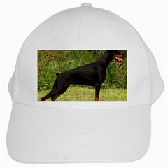 Doberman Pinscher Black Full White Cap