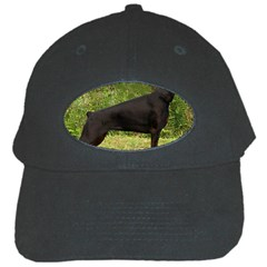 Doberman Pinscher Black Full Black Cap