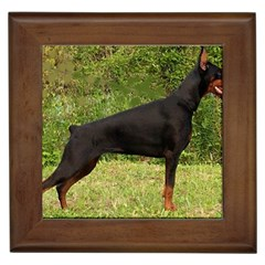 Doberman Pinscher Black Full Framed Tiles