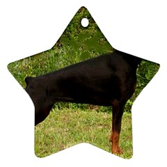 Doberman Pinscher Black Full Ornament (Star)