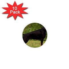 Doberman Pinscher Black Full 1  Mini Buttons (10 pack)