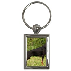 Doberman Pinscher Black Full Key Chains (Rectangle)
