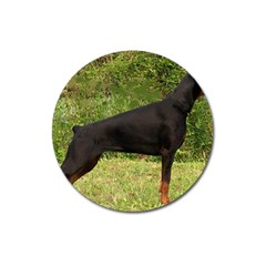 Doberman Pinscher Black Full Magnet 3  (Round)