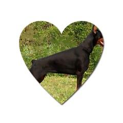 Doberman Pinscher Black Full Heart Magnet