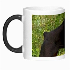 Doberman Pinscher Black Full Morph Mugs