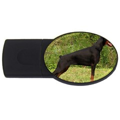 Doberman Pinscher Black Full USB Flash Drive Oval (4 GB)