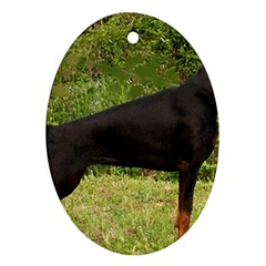 Doberman Pinscher Black Full Oval Ornament (Two Sides)