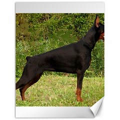 Doberman Pinscher Black Full Canvas 12  x 16