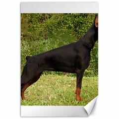 Doberman Pinscher Black Full Canvas 20  x 30