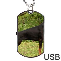 Doberman Pinscher Black Full Dog Tag USB Flash (One Side)