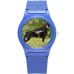 Doberman Pinscher Black Full Round Plastic Sport Watch (S)