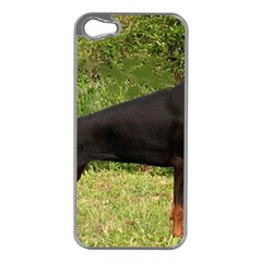 Doberman Pinscher Black Full Apple iPhone 5 Case (Silver)