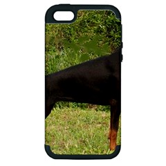 Doberman Pinscher Black Full Apple iPhone 5 Hardshell Case (PC+Silicone)