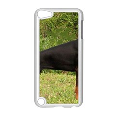 Doberman Pinscher Black Full Apple iPod Touch 5 Case (White)