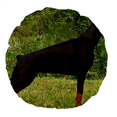 Doberman Pinscher Black Full Large 18  Premium Round Cushions