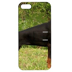 Doberman Pinscher Black Full Apple iPhone 5 Hardshell Case with Stand