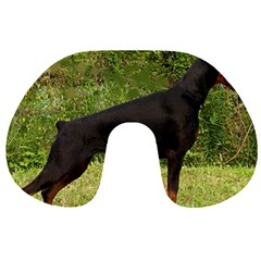 Doberman Pinscher Black Full Travel Neck Pillows