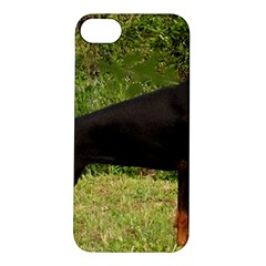 Doberman Pinscher Black Full Apple iPhone 5S/ SE Hardshell Case