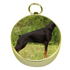 Doberman Pinscher Black Full Gold Compasses