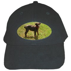 Red Doberman Puppy Black Cap