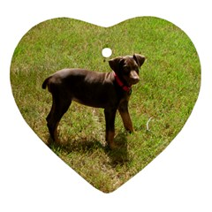 Red Doberman Puppy Ornament (Heart)