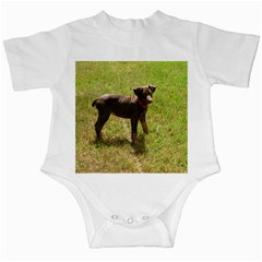 Red Doberman Puppy Infant Creepers