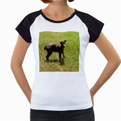 Red Doberman Puppy Women s Cap Sleeve T
