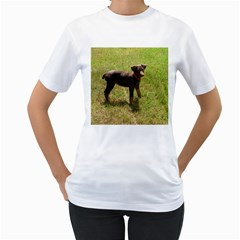 Red Doberman Puppy Women s T-Shirt (White) (Two Sided)