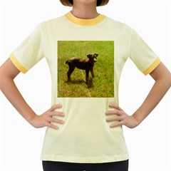 Red Doberman Puppy Women s Fitted Ringer T-Shirts