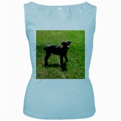 Red Doberman Puppy Women s Baby Blue Tank Top