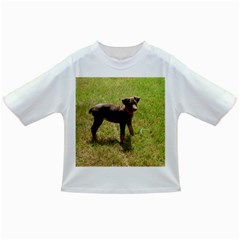 Red Doberman Puppy Infant/Toddler T-Shirts