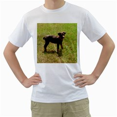 Red Doberman Puppy Men s T-Shirt (White) (Two Sided)