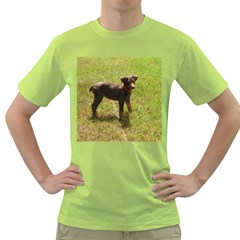 Red Doberman Puppy Green T-Shirt